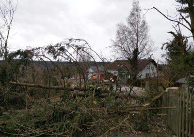 Sturm Sabine Bild 6