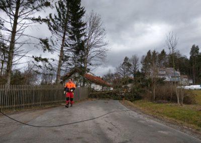 Sturm Sabine Bild 3